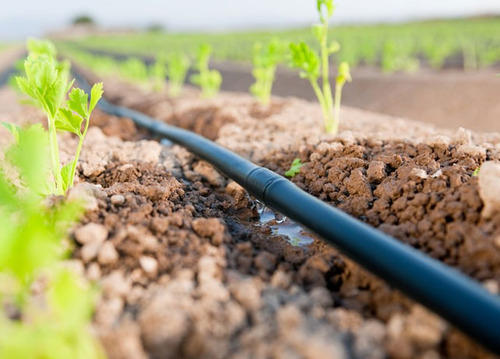 Global-Micro-Irrigation-Systems-Market.jpg